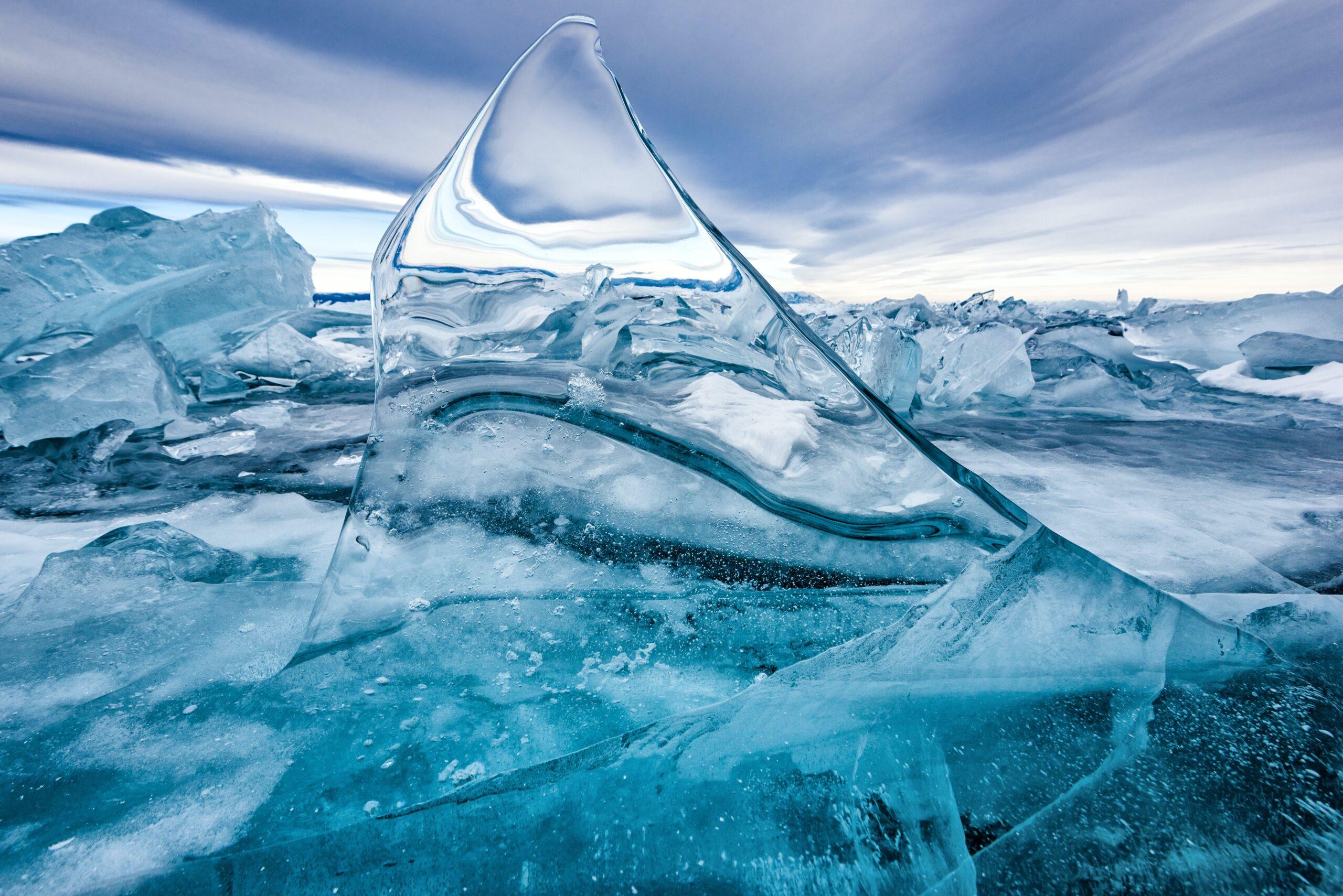 完全口座凍結